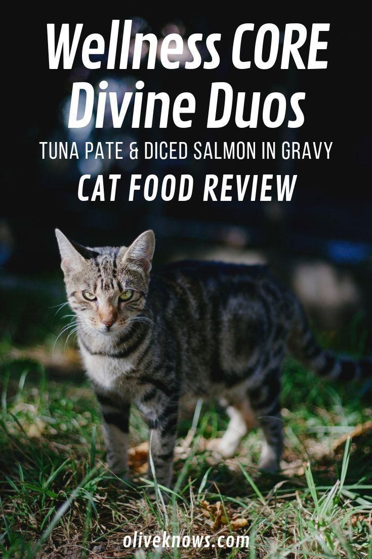 Wellness Core Divine Duos Tuna Pate Diced Salmon In Gravy Grain