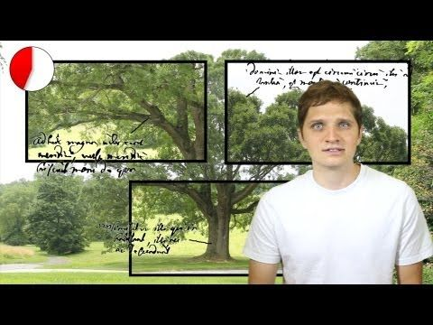 Swedenborg Minute: A Tree is an Image of our Mind Can we learn spiritual truths by observing nature? Swedenborg wrote that all the phenomena we see around us can tell us about deeper realities if we know how to read them.
