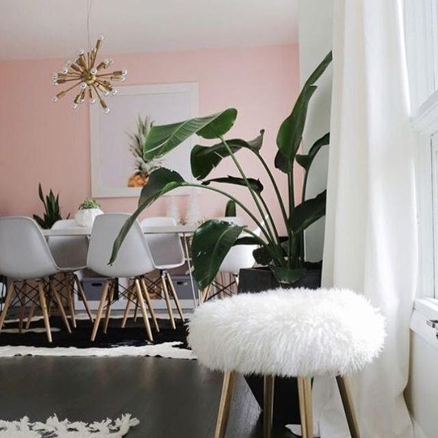 17+ best images about DINING ROOM / COMEDOR on Pinterest ...