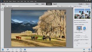 Photoshop Elements 14 Essential Training