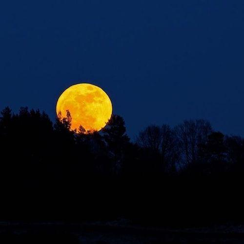 Super Luna: tutto quello che c'è da sapere sulla luna gigante che non si vedeva da 68 anni