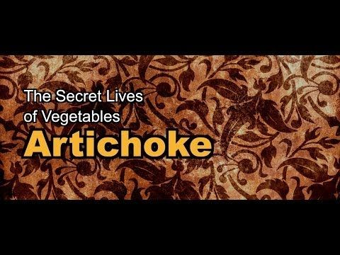 The Secret Lives of Vegetables: Artichoke