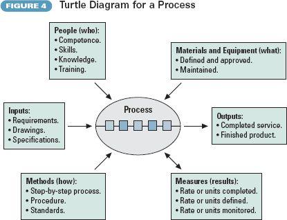 image result for turtle diagram iso. Black Bedroom Furniture Sets. Home Design Ideas
