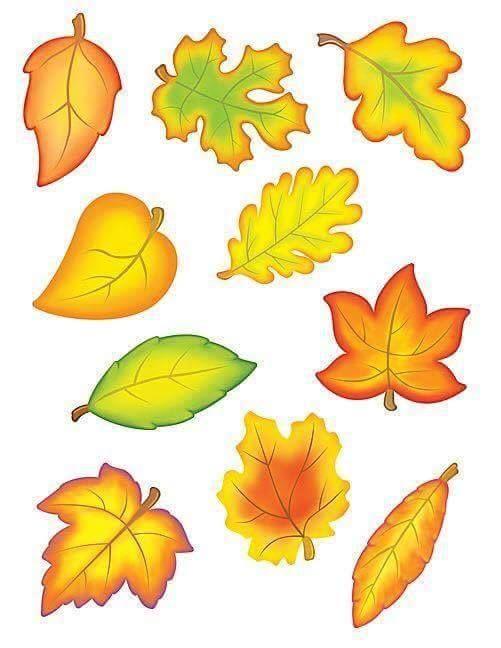 листья осенние картинки распечатать на цветной бумаги выборе