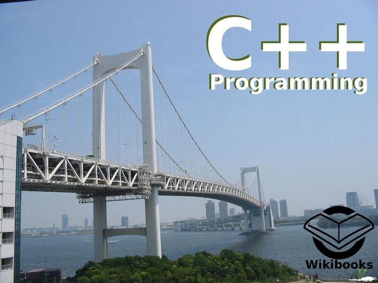 esperto programmatore fa lezioni di informatica: C++, Java, C# ...