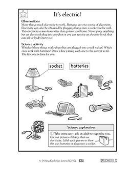 1st Grade 2nd Kindergarten Science Worksheets It 39 S