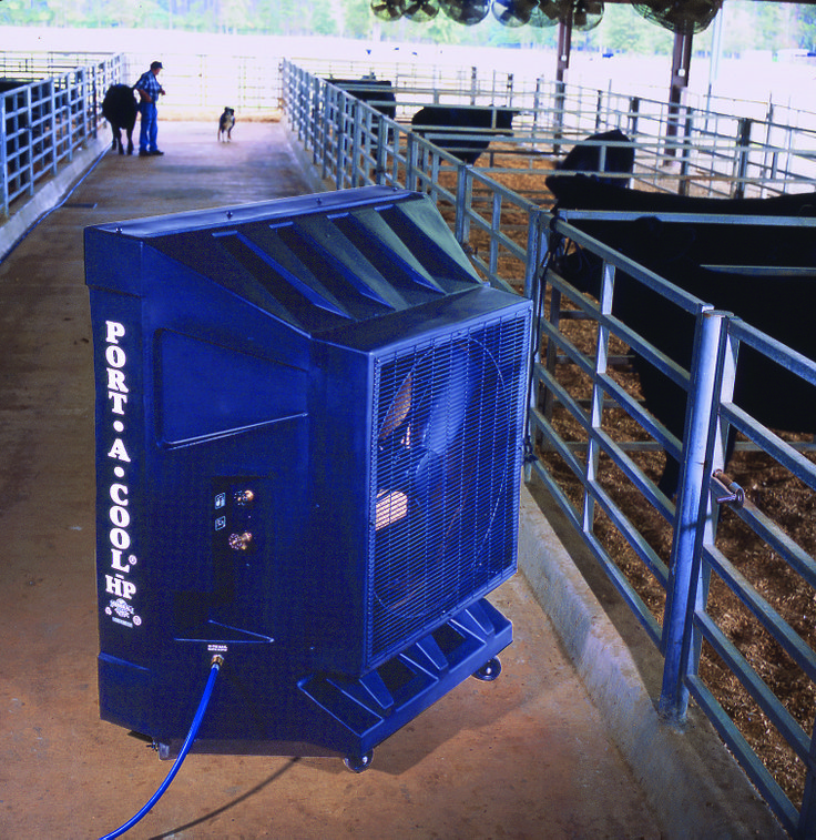 Port-A-Cool evaporative cooler used in a cow barn, agricultural