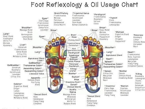 Reflexology and Doterra Essential Oils guide!  http://mydoterra.com/gladysyarbrough