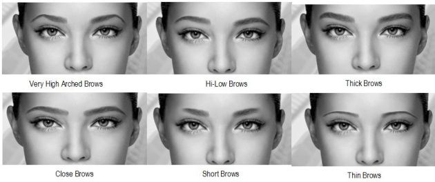 sourcils -différentes formes
