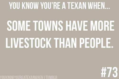 You know you're a Texan when...some towns have more livestock than people.