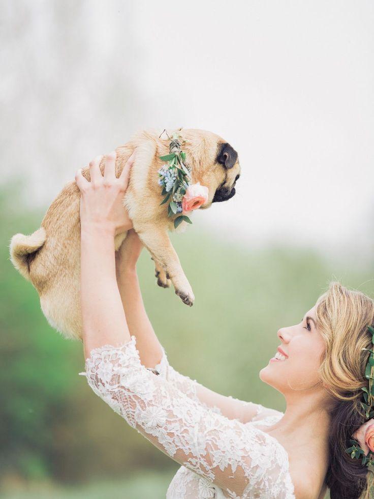 Pet Pug with Floral Collar | Ami Elisah Wedding Dress | Romantic Inspiration Shoot At Spains Hall Estate