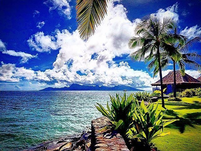 Do you know what is the name of this island in the background ?? The photo was taken from InterContinental Tahiti Resort & Spa :)  @naeem.1984  tahiti.intercontinental.com  #ICTahiti #Tahiti #FrenchPolynesia #blue #poolday #palmtree #honeymoon #family #love #lovers #paradise #relax #enjoy #travel #luxurytravels #sunny #island #islandlife #bluelife #besttime