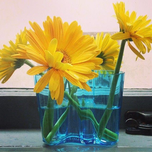 Aalto Vase gift from iittala and Dalias from Fitz http://www.fitzsu.com/iittala-aalto-vase-6-25-in-clear.html