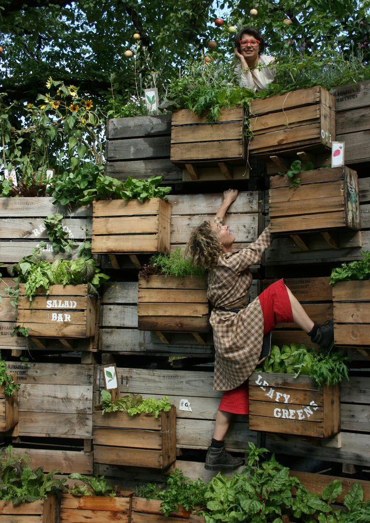 A sustainable and edible stage made from plants.
