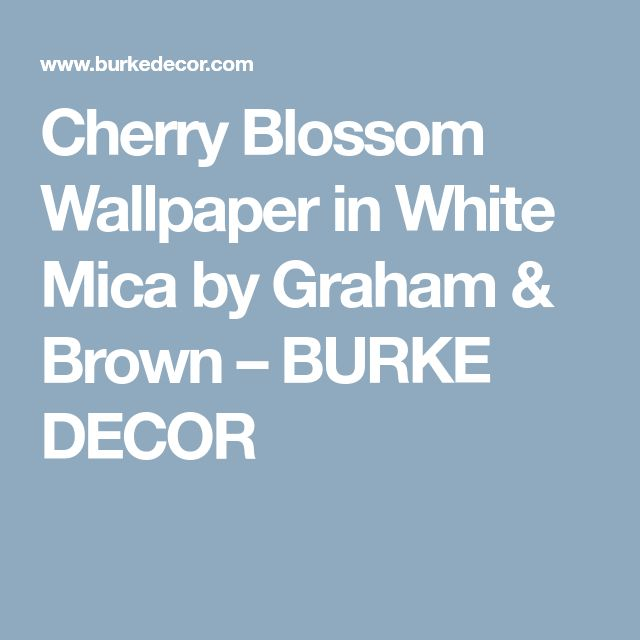 Cherry Blossom Wallpaper in White Mica by Graham & Brown – BURKE DECOR