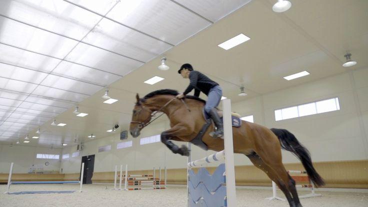 Image: Show jumping tutorials (2016) Kuva: Taitava esteratsukko -videosarja (2016)