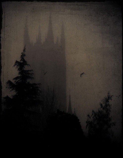 in the shadow of... #gothic #horror #darkness