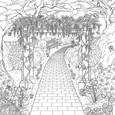 Mejores 71 imágenes de Calming coloring en Pinterest   Libros para ...