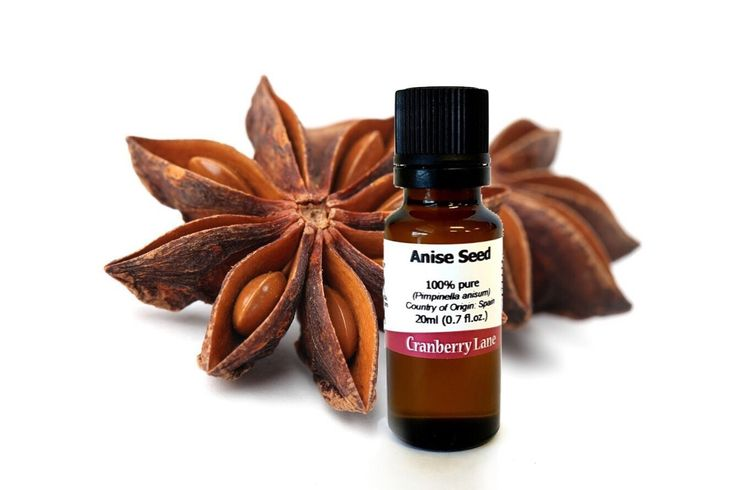 Anise Seed 100% Pure Essential Oil - 100ml: Amazon.ca: Beauty