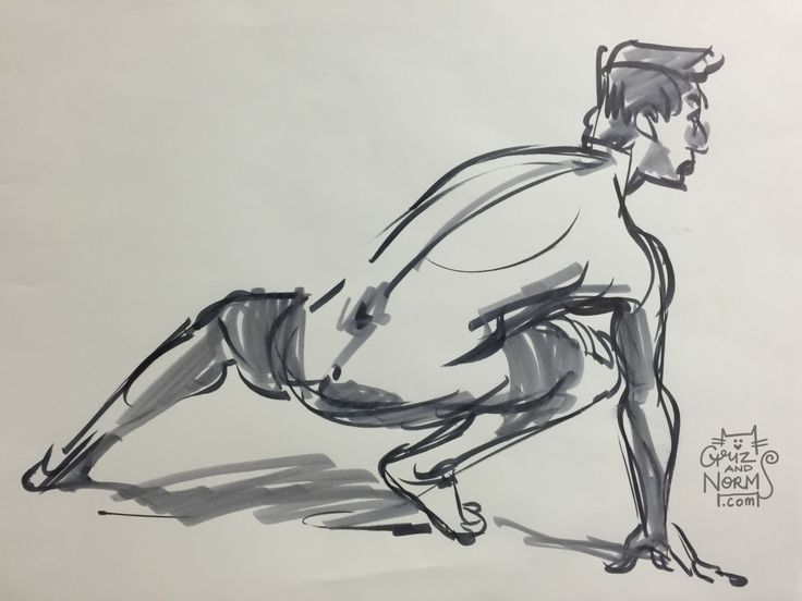 Figure drawing from Griz & Norm