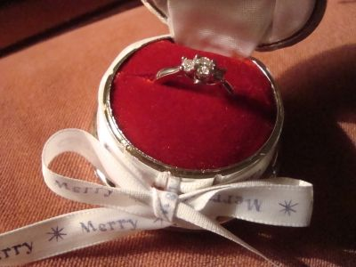 The 25+ best Christmas proposal ideas on Pinterest | Perfect ...