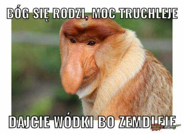 Janusz Tyyym Raaaeeem Nieee Swiezaaaaki Ciekawe Humor Funny I
