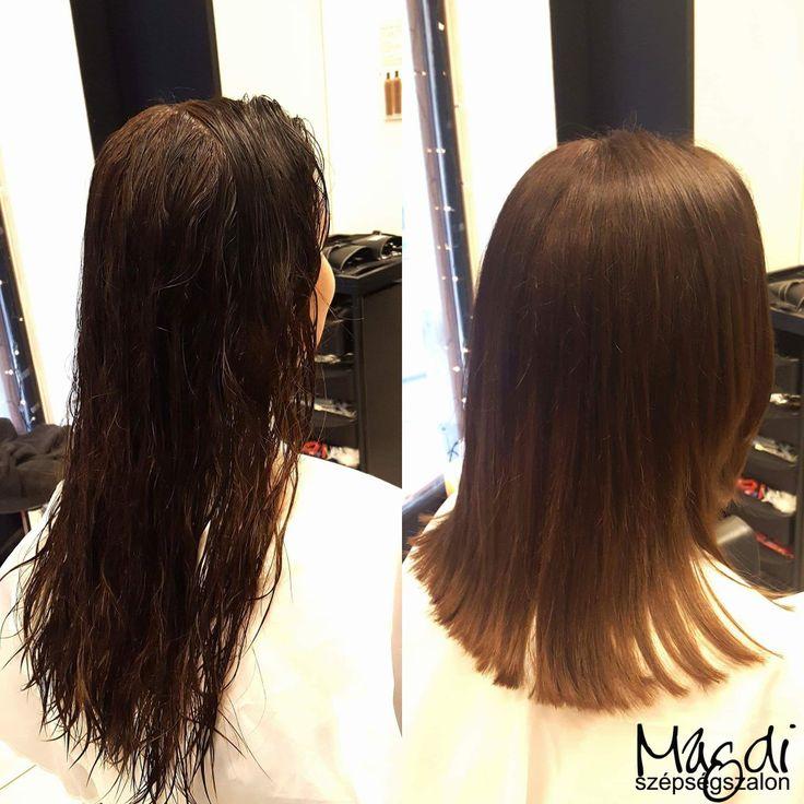 Karácsonyra egy új frizura? Akár lehet egy rövidebb fazon is ;) Mit gondolsz? :)  www.magdiszepsegszalon.hu  #hairstyle #hair #hairfasion #haj #festetthaj #coloredhair #széphaj #szépségszalon #beautysalon #fodrász #hairdresser #ilovemyhair #ilovemyjob❤️ #hairporn #haircare #hairclip #hairstyle #hairbrained #haircut #hairsalon #hairpro #hairup #hairdye #hairstylist #haircuts #hairoftheday #hairgoals #hairideas #haircolor #hairstyles