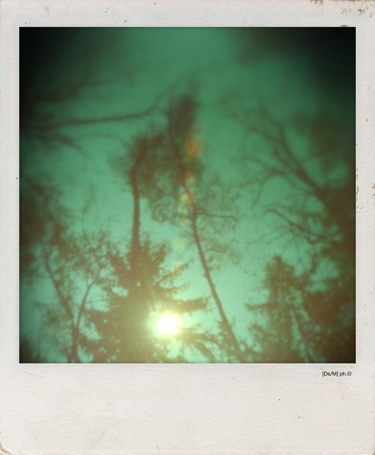 [un] DOMANI Conservo il tuo respiro nelle tasche, come una pastiglia che fa male, ti frugo, ad occhi bianchi, come a colmare l'aria che hai lasciato fra le dita,  e dentro e fuori e ancora dentro.  Fino a [un] domani.  Nudo coi cinque sensi in testa,  appena appeso al raggio di sole nella mia foresta.   http://paralleluniverseinpolaroid.wordpress.com