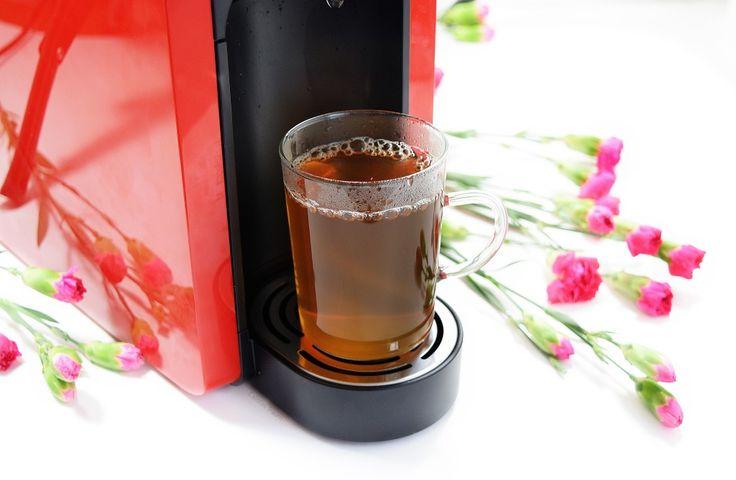 Die neue Lust auf Tee