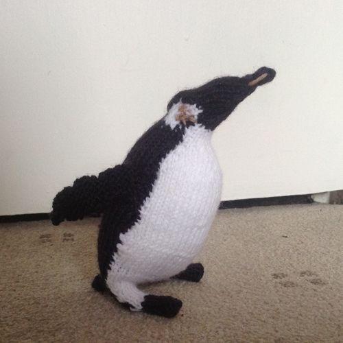 Isobel's Penguin