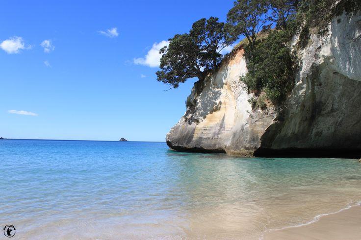 Neuseeland - Traumstrand (bekannt aus Narnia)