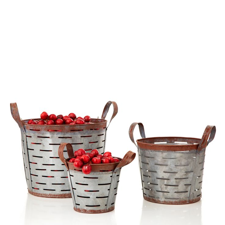 Fleur Tin Bucket (Set of 6)