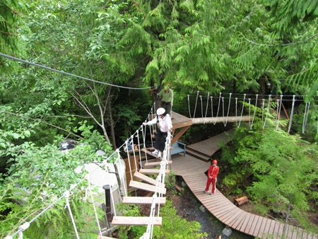 Wouldn't it be cool to have a rope course in your own backyard?