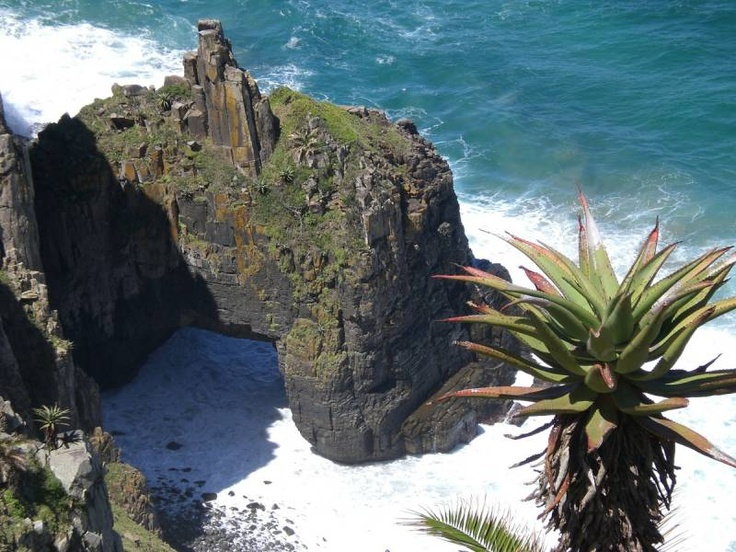 The rugged Wild Coast in South Africa