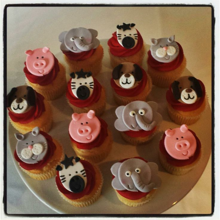 Cute Animal Images!  Contact Bella's for a quote- 0430 844 633 or admin@bellascupcakeworld.com
