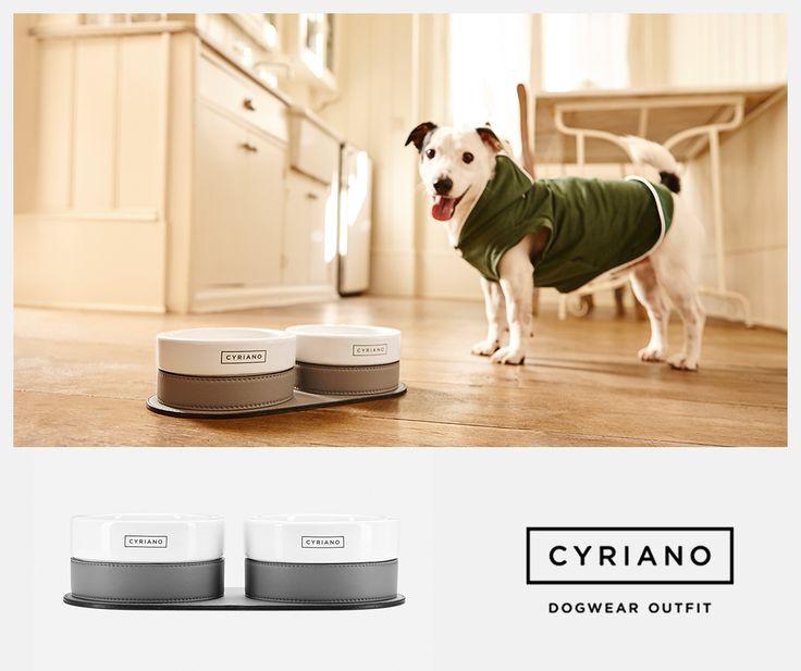 Diseño y distinción en un práctico comedero para mascotas  #TwinsBowl #Cyriano
