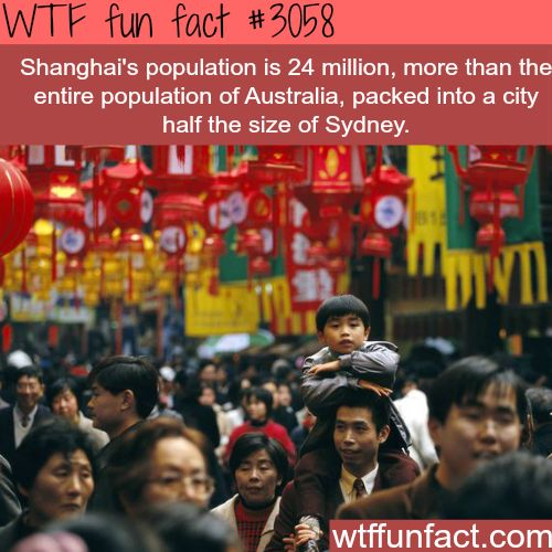 Shanghai's population compared to Australia -  WTF fun facts