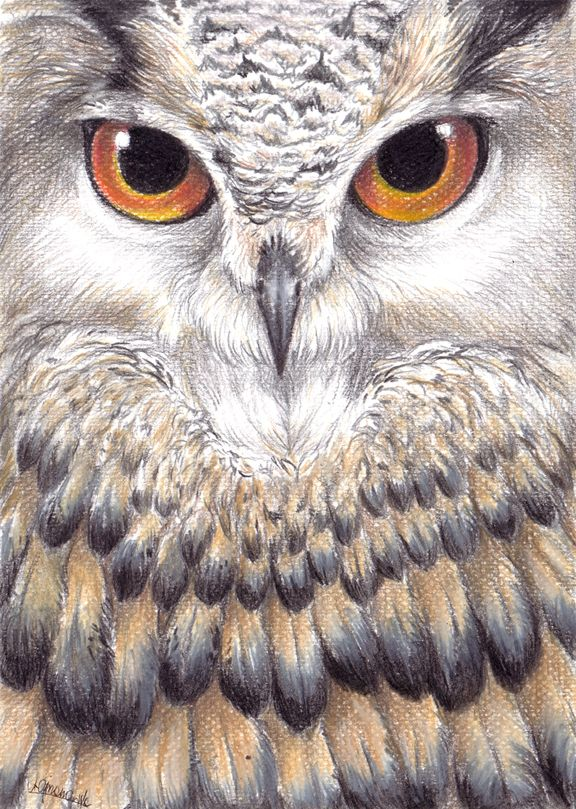 The owl is watching you. by AriaDog.deviantart.com on @deviantART