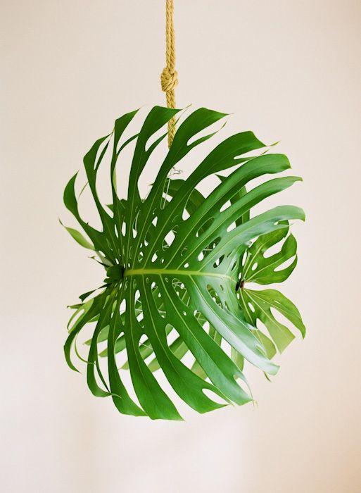 So simple! Giant DIY Tropical Leaf Pendant Light via oncewed.com