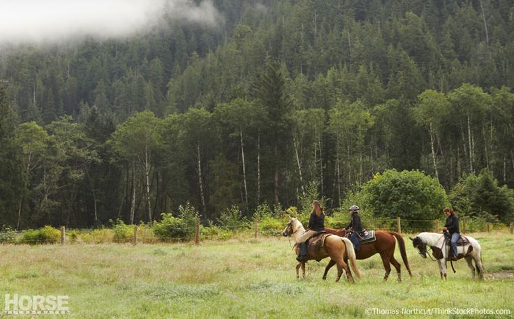 Get away to the great outdoors with your horse.