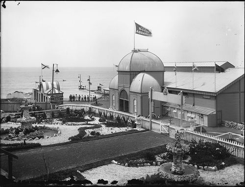 The Bondi Aquarium offered entertainments including performing seals, donkey and pony rides, a skating rink and a switch-back railway. It was destroyed by fire in July, 1891 but was quickly rebuilt and re-opened the same year. The new main building (shown) was described as a larger and 'more artistic' edifice. Inside, arches and rock work adorned the aquarium tanks and they were illuminated from above by a skylight. An aviary was added.