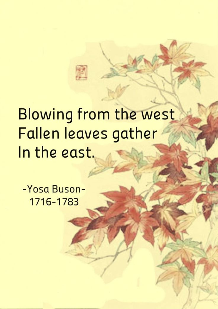 Blowing from the west, Fallen leaves gather in the east. - Yoso Buson, japanese poet #haiku #poetry