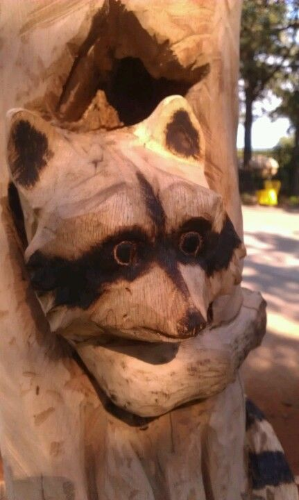 Raccoon Chainsaw Carving My Art Pinterest Carving