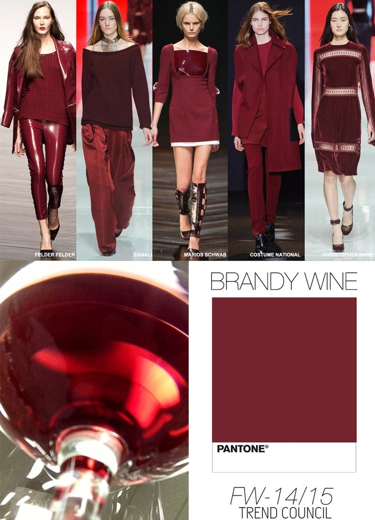 TREND COUNCIL FALL/WINTER 2014- BRANDY WINE