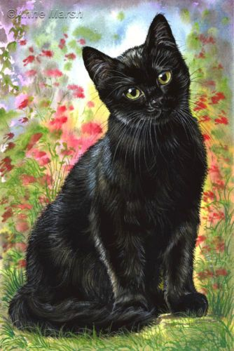BLACK CAT YOUNG HOPE LIMITED EDITION PRINT FANTASY PAINTING ANNE MARSH ART | eBay