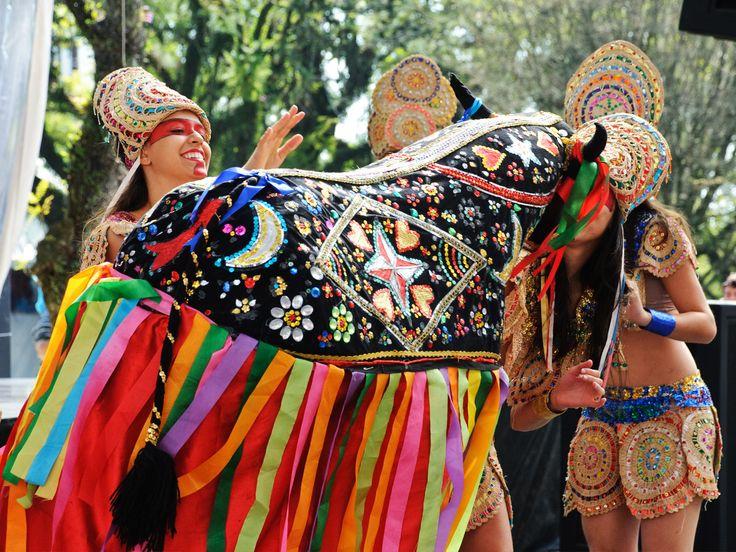 Bumba-meu-Boi no Maranhão - A festa do boi no Nordeste era parte integrante dos reisados, mas por causa da força de sua manifestação tornou-se independente e, especificamente no Maranhão, apresenta-se como um dos maiores festejos brasileiros, alcançando uma beleza incomparável, observada nos trajes e na riqueza de elementos coreográficos e musicais.