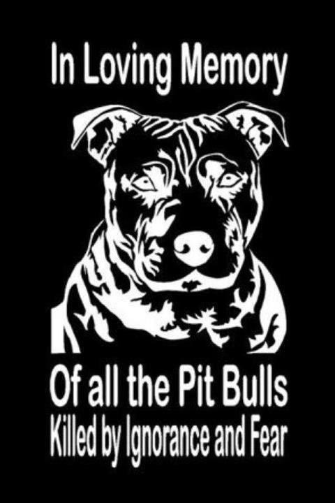 ~Pitti Luv, Dogs,  Dust Jackets, Bull Decals, Pitbull, Pit Bull,  Dust Covers, Animal,  Dust Wrappers