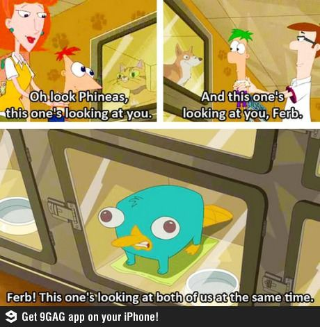 One of my favorite moments in the life of Perry the Platypus