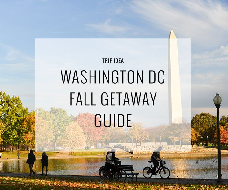 Memorable things to do in Washington DC this Fall.