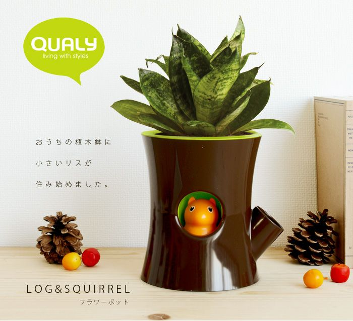 Log & Squirrel self planting pot